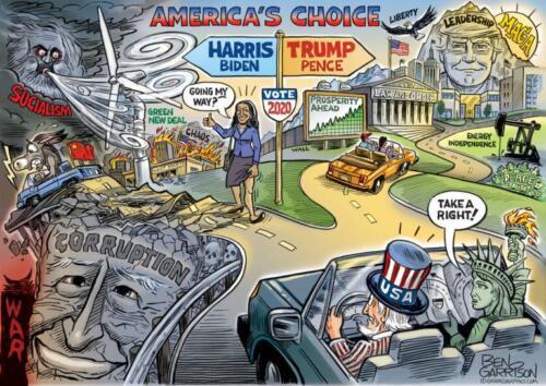 election-2020 choice cartoon-768x543